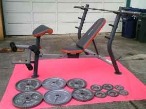 olympic weight bench 305lbs oly weights oly bar santa