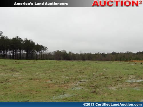 Online Auctions Florida Land for Sale - Walton County,