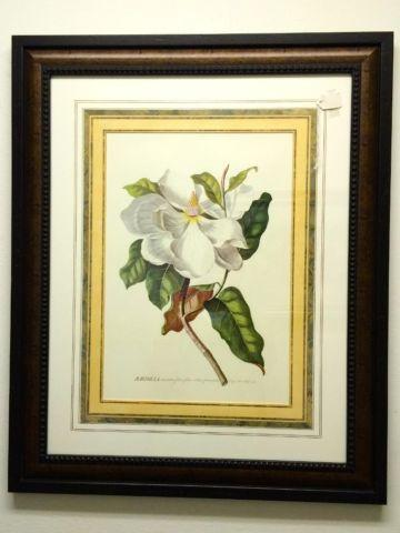 Pair Of Magnolia Prints Framed For Sale In Dallas Texas Classified