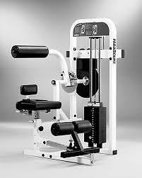 Paramount FL-36 Back/AB Fitness Line Gym Equipment