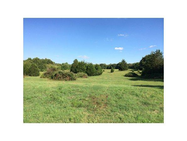 Pendleton, SC Anderson Country Land 59.820000 acre