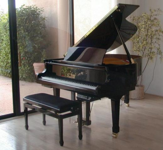"Petrof 5'8"" grand piano, black, with lots of extras"