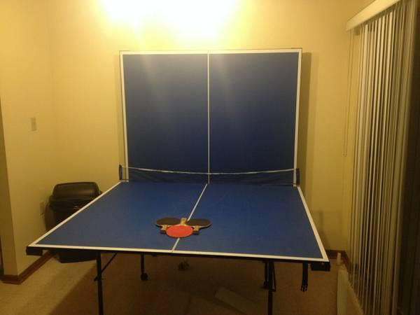 PING PONG table has to go TODAY - $100