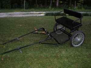 pony cart (Indy)