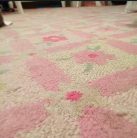 Pottery Barn Kids 5' x 8' Area Rug - $60