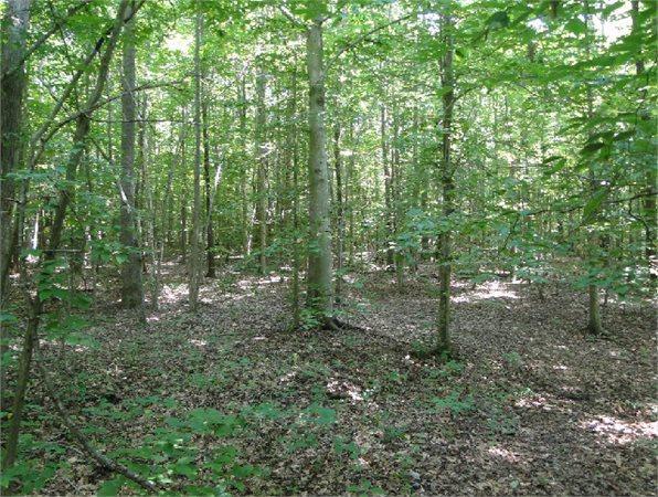 powhatan va powhatan country land acre for sale in powhatan virginia classified