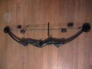 Proline Point Blank Compound Bow - $50 (Milwaukee)