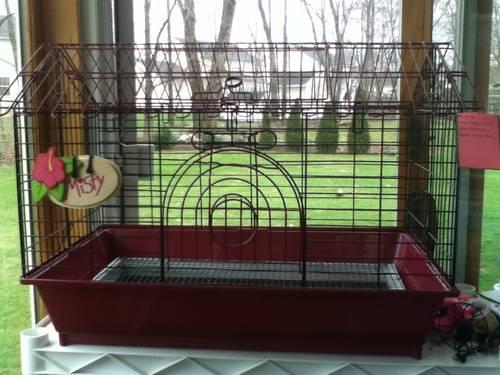 Rabbit guinea pig gerbial hamster and other small for Small guinea pig cages for sale