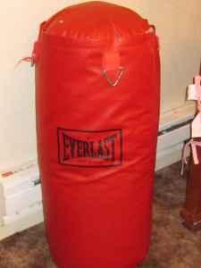 Red Everlast Punching Bag Sunnyside For Sale In