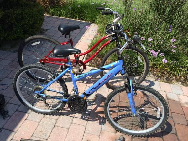 Red Retro Sun Cruiser & Blue Mountain Bike - $60