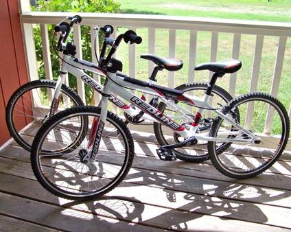 Redline Bmx Race Pro Bicycles For Sale In The USA
