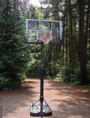 Reebok basketball hoop for Sale in Argyle, Washington ...