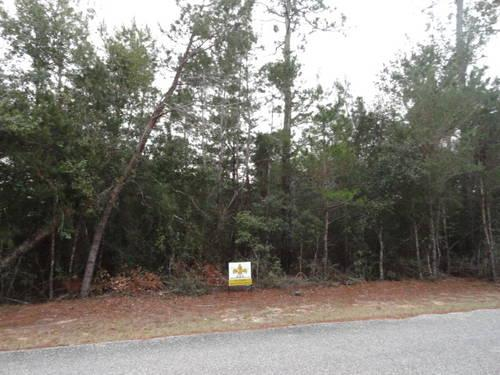 Residential Lot for Sale, 7277 Mossy Oaks Drive,