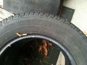 Rims and tires - $125 Avon extended
