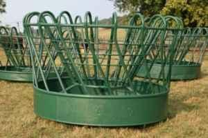 Feeder Pigs For Sale In Virginia Classifieds Buy And Sell In