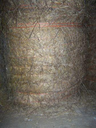 round hay bales berlin pa for sale in altoona pennsylvania classified. Black Bedroom Furniture Sets. Home Design Ideas