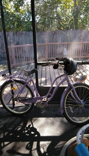 Schwinn purple bicycle