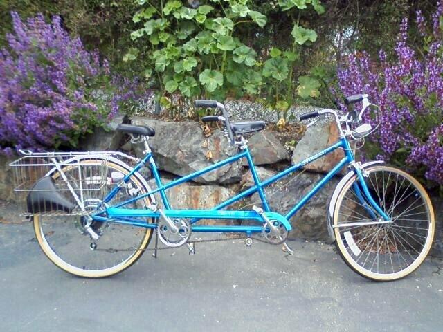 Bikes Schwinn For Sale Owner Schwinn Vintage Deluxe Twinn