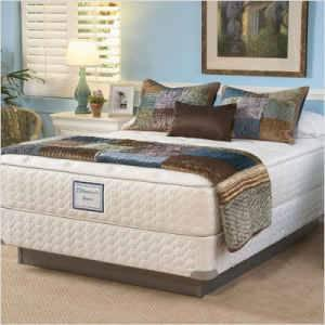 Sealy King Mattress Sets Model Home Furniture Retails 1699 For Sale In Annapolis