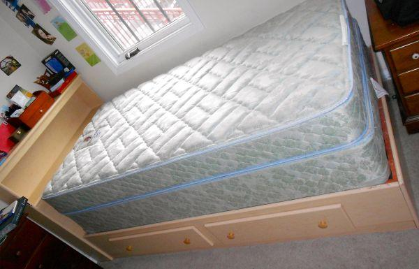 Sealy Twin Mattress Box Springs And Bed For Sale In