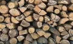 Seasoned Firewood for sale (GA/SC)