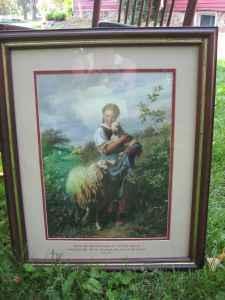 SHEEP PICTURE - $40 (Grand Ledge)