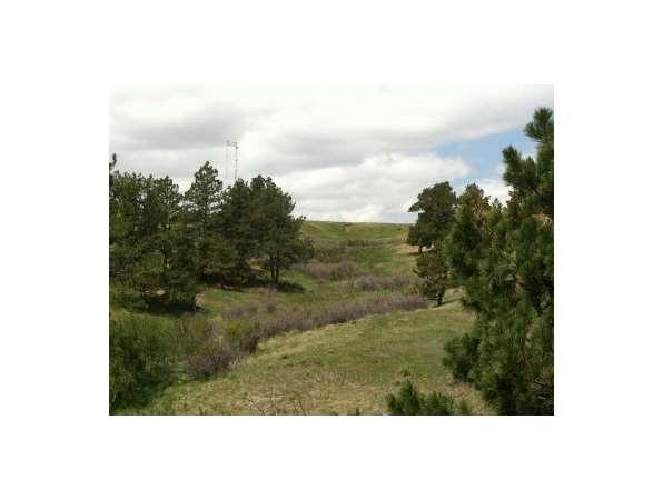 Simla, CO Elbert Country Land 464.00 acre