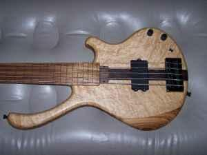 Simonetti fretless 5 string custom bass - $500 (Pigeon