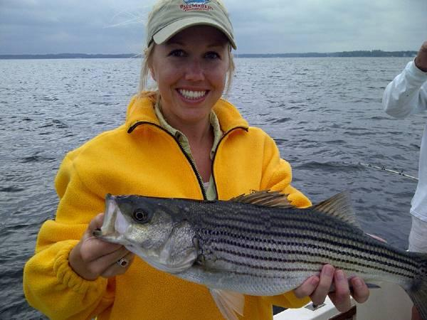Striped bass fishing at its best on lake murray s c for for Lake murray fishing report