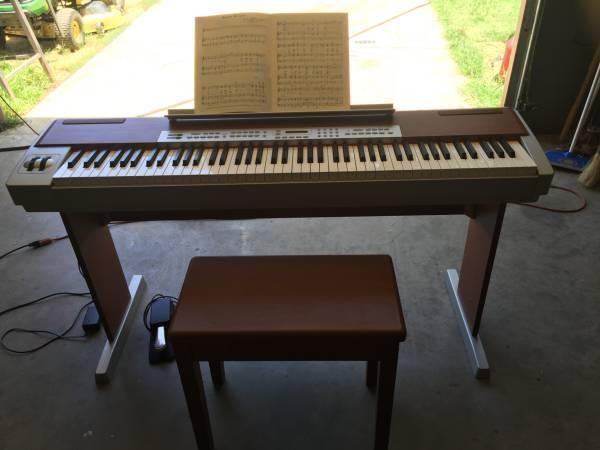 Suzuki Digital Piano Ss 100 For Sale In Harden City