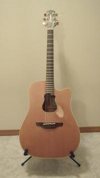 Takamine GB7C acoustic/electric guitar and accessories
