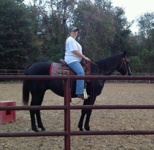 Tall, dark brown/black OTTB gelding