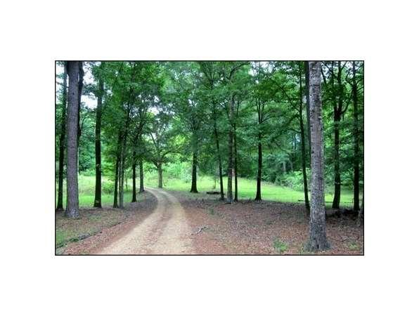 Hinds Garage Cars For Sale: Terry, MS Hinds Country Land 30.00 Acre For Sale In Terry