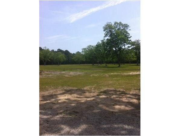 Theodore, AL Mobile Country Land 19.000000 acre