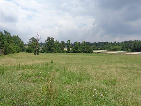 Thomasville, AL Clarke Country Land 140.000000 acre