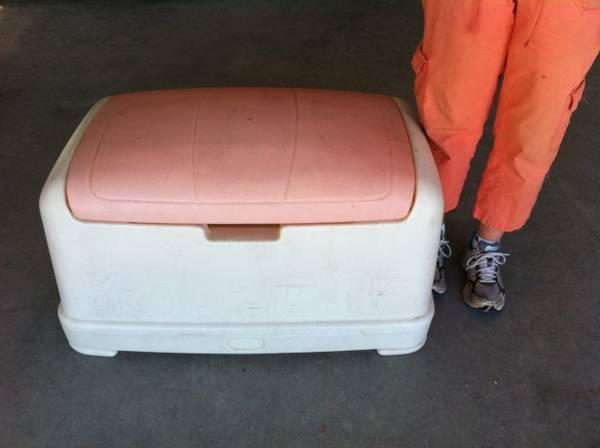 Peachy Little Tikes Victorian Bench Toy Box Classifieds Buy Creativecarmelina Interior Chair Design Creativecarmelinacom