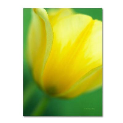 Trademark Fine Art 16 in. x 24 in. Hint of a Tulip