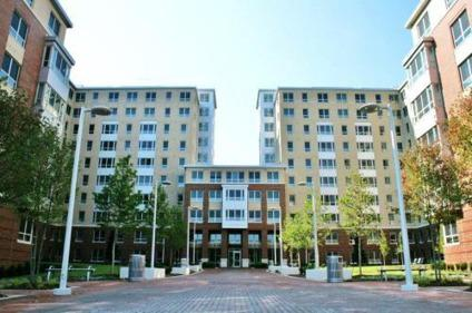 Valentine Commons Apartment Sublease
