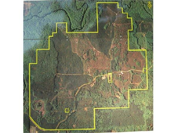 Vernon, FL Washington Country Land 1196.000000 acre