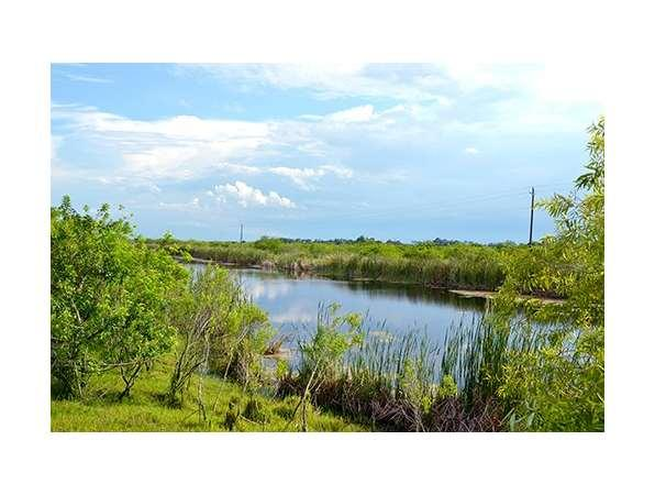 Homes For Sale In Indian River Country Club Vero Beach