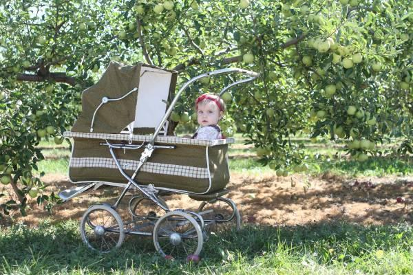 Vintage Baby Buggy Carriage - $75
