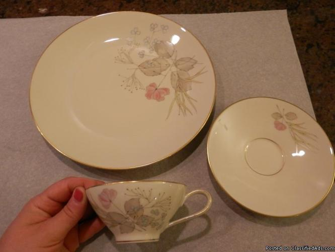 Vintage Rosenthal China Parisian Spring dinner plate, flat cup and saucer