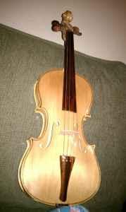 `violin (modesto)
