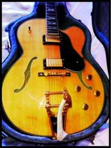 Washburn J7 Jazz Guitar Bigsby price change - $799