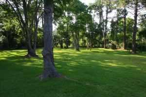 Waterfront Property on Fowl River Canal for Sale by