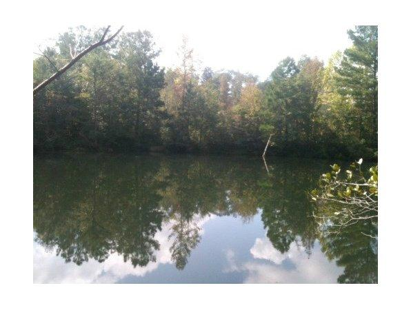 Woodstock, AL Bibb Country Land 127.000000 acre