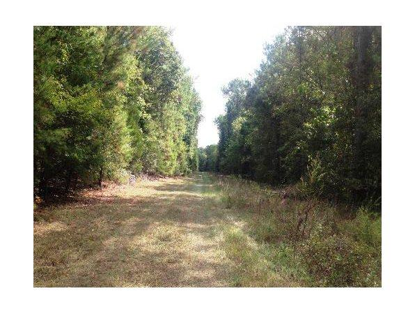 Woodstock, AL Bibb Country Land 21.170000 acre