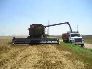 wtb 1688 case ih combine ks for sale in salina kansas