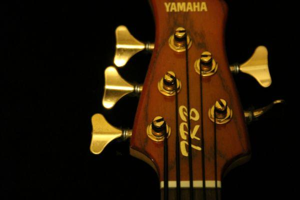 Yamaha Trb 5 String Bass Obo Mobile For Sale In Mobile Alabama Classified Americanlisted Com