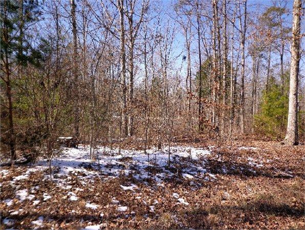 York Sc York Country Land 1 420000 Acre For Sale In York